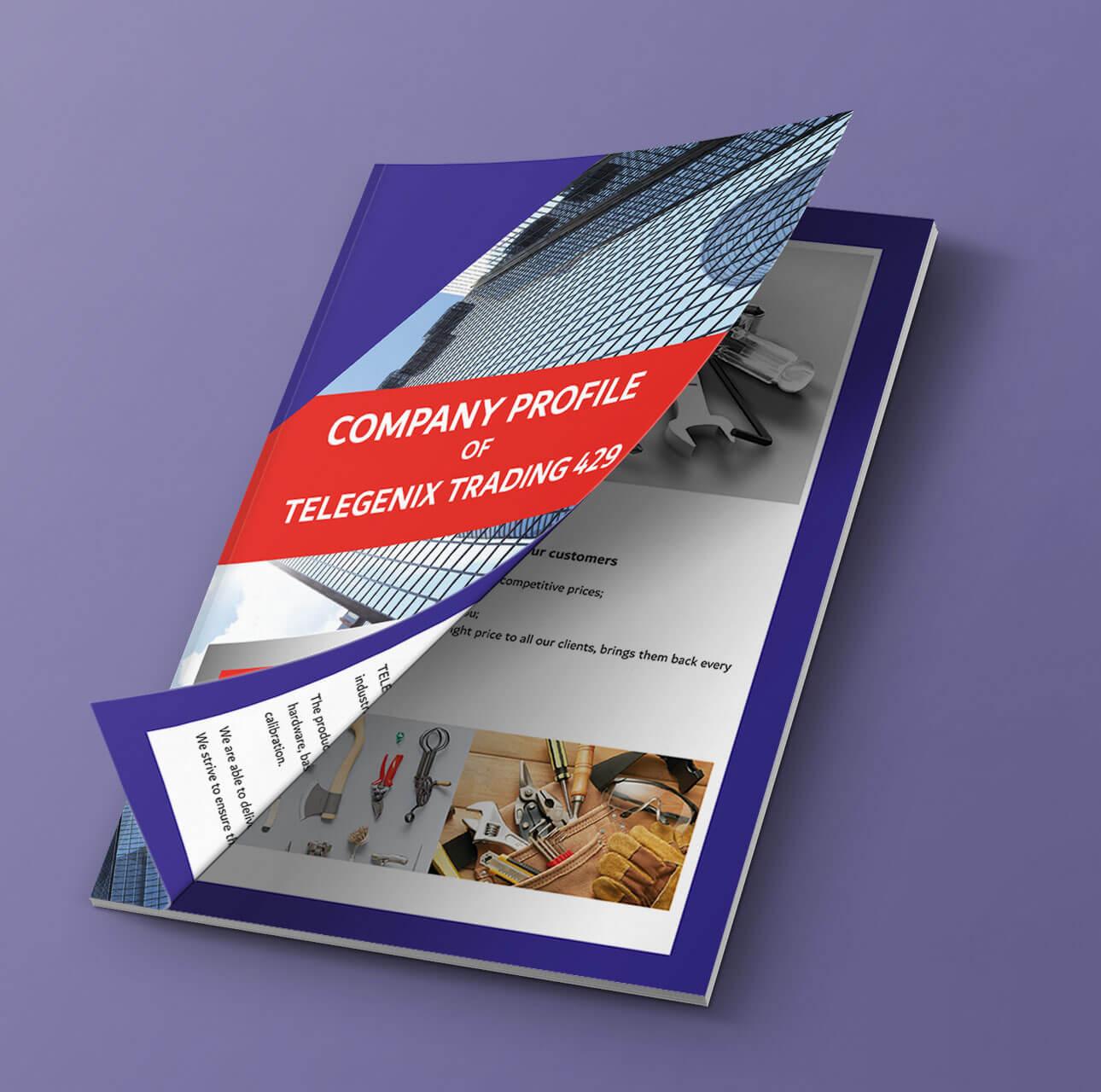 G2-Company-profile-design